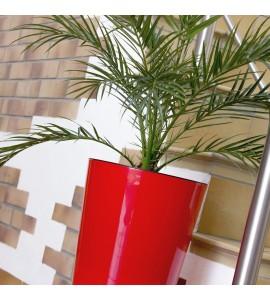 Tubus Slime Shine Rosso Corallo con Pianta 2