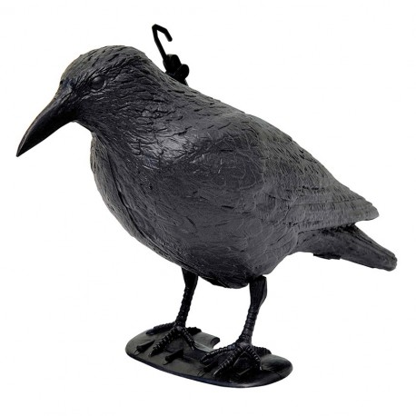 corvo dissuasore per volatili