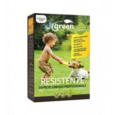 Seme tappeto erboso prato Resistente - Sacco da 5 Kg