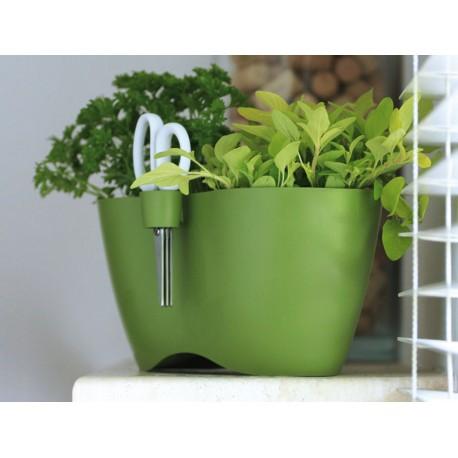 Vasi Per Piante Aromatiche.Vaso Doppio Per Erbe Aromatiche Con Forbice Serie Cube Limes Dublo 2 3 Lt Colore Verde
