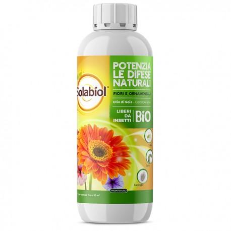 Olio di soia BIO corroborante naturale 100% - Litri 1