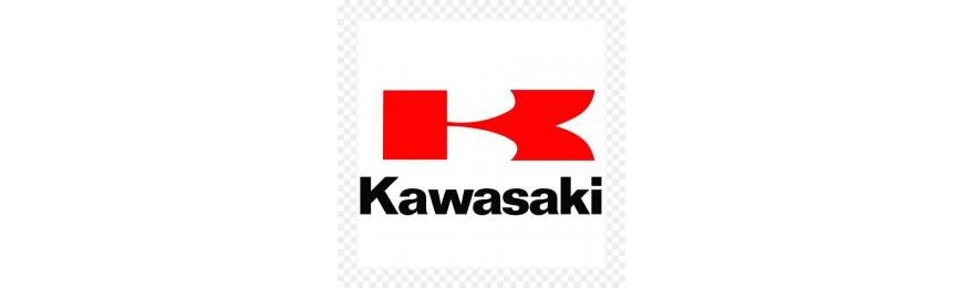 Kawasaki R.