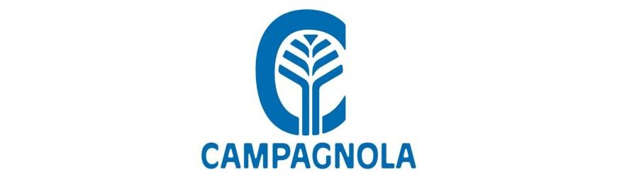 Campagnola R.